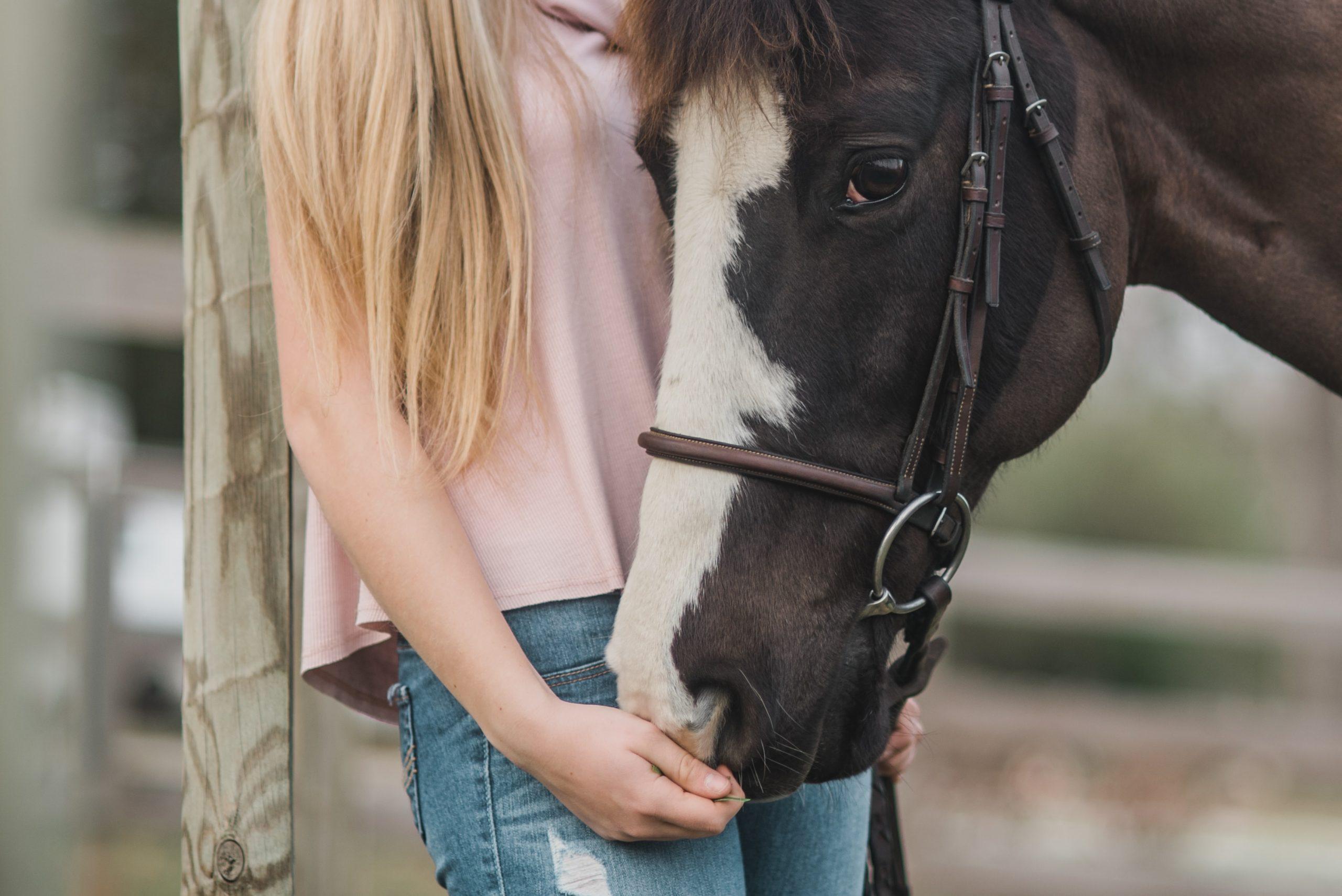 Horse Riding Ayrshire